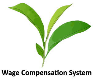 Wage Compensation System